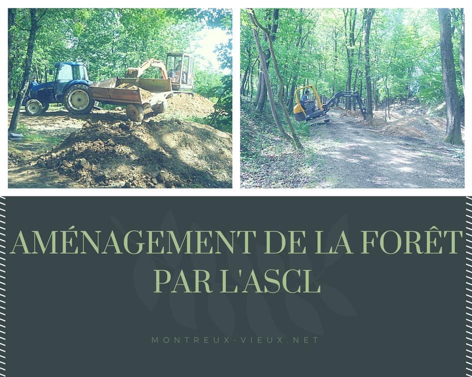 Aménagement de la forêt par l'ASCL